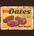 dates dried fruits metal plate food rusty poster vector image vector image