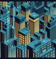 night new york isometric perspective cartoon vector image