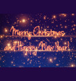shining greeting text on colorful vector image vector image