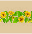 sunflower plant pattern on color background vector image