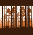 sunny forest background of vector image