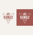hawaii state textured vintage t-shirt and vector image vector image