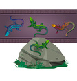 set of lizards of various colors vector image vector image
