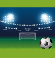 soccer ball and goal with spotlight background vector image