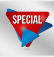 special sign or label vector image vector image