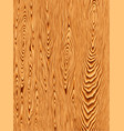 texture natural wood vector image vector image
