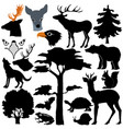 wildlife at forest vector image vector image
