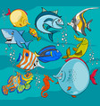 fish cartoon characters group vector image vector image
