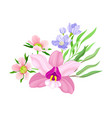 purple orchid bloom with labellum arranged with vector image vector image