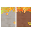 set of autumn banners with maple oak rowan and vector image