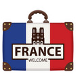 travel suitcase with french flag and notre dame vector image vector image