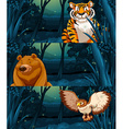 Wild animals in the woods at night vector image