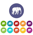 Wild elephant set icons vector image vector image