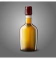 Blank realistic whiskey bottle isolated on grey vector image