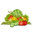 Vegetables mix on white vector image