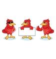 Cardinal Mascot happy vector image vector image