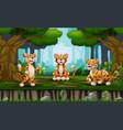 cartoon tree tigers enjoying in jungle vector image vector image