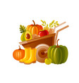 farm wheelbarrow with harvest fruit vegetable vector image