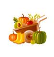 farm wheelbarrow with harvest fruit vegetable vector image vector image
