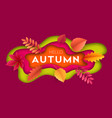 fashionable modern autumn background with bright vector image vector image