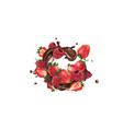 fresh strawberries and raspberries and splashes of vector image vector image