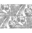jungle black andwhite leaves of tropical palm vector image vector image