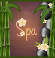 spa salon banner with stones and bamboo thai vector image vector image