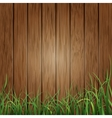 Wood planks and green grass background vector image vector image