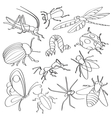 Doodle insects vector image vector image