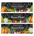 fresh farm vegetable banners with veggie sketches vector image vector image
