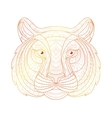 Hand drawn doodle outline tiger vector image