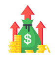 income increase financial strategy high return vector image