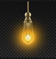 light bulb edicson electric light bulb vector image