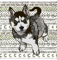 Puppy Husky vector image vector image