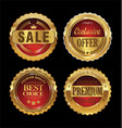 quality retro golden badges collection 2 vector image vector image