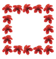 Red hibiscus frame vector image