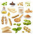 soy food products set vector image vector image