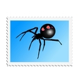 stamp with image of black widow vector image vector image