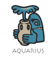 lmage of aquarius astrological sign of zodiac vector image
