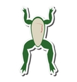 biology class frog surgery icon vector image