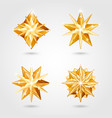 christmas decoration 2019 stars vector image vector image