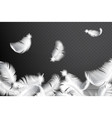 falling realistic feathers isolated vector image vector image
