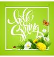 Inscription Hello Spring Hand Lettering on