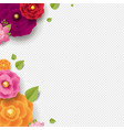 spring border with color flowers transparent vector image vector image