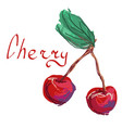 abstract cherry on white background vector image