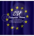 EU Flag Curtain vector image