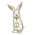 cute hand drawn rabbit isolated on white vector image vector image