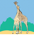 Funny couple in love giraffes vector image vector image