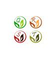 leaf health nutrition initial q r s t vector image vector image