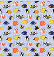 seamless fish pattern angelfish triggerfish vector image vector image